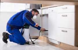 types of pest control in Hertfordshire