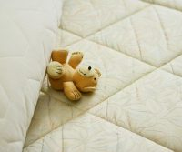mattress for bed bugs