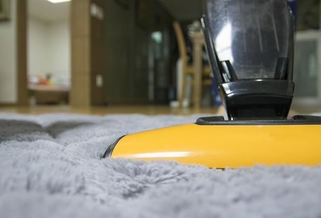 vacuum more often