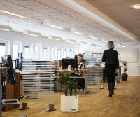 pest problems in offices